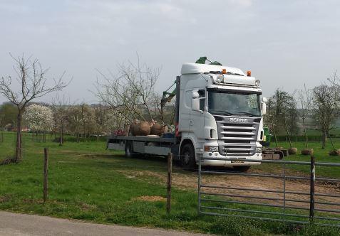 Diensten - Verkoop, planten en transport van karakteristieke (fruit)bomen