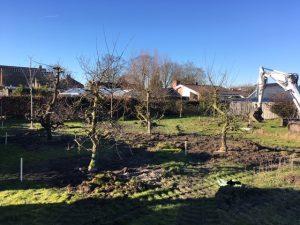 aanleg boomgaard sint pancras